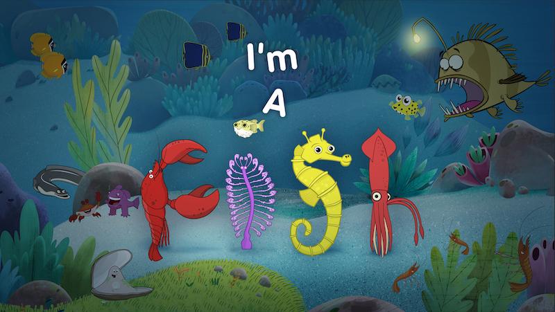 IM-A-FISH-Series-STILL-1