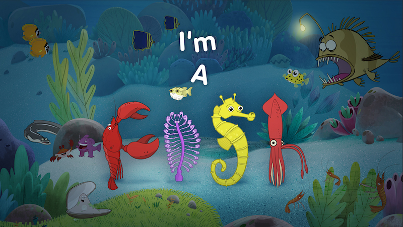 IM-A-FISH-Series-STILL-1
